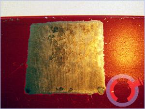 где купить прессформу для изготовления технопланктона